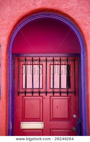 Artistic door in Tucson Arizona