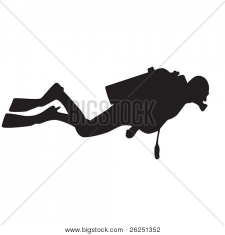 Vector silhouette of diver