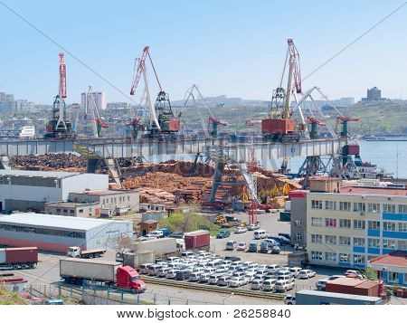 timber export at russian cargo port Vladivostok