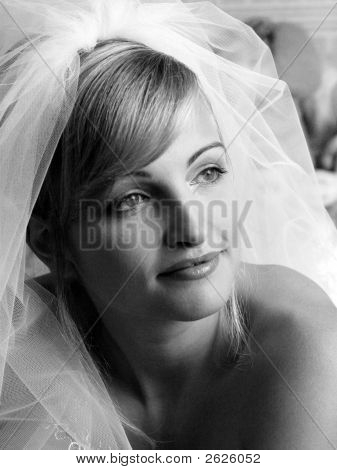Attractive Bride With Veil
