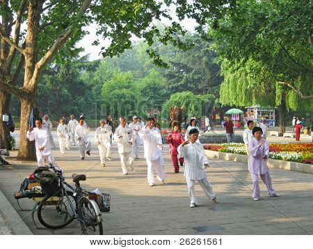 DALIAN - MAY 28: traditional taichi wushu festival at Dalian, May 28, 2009, China