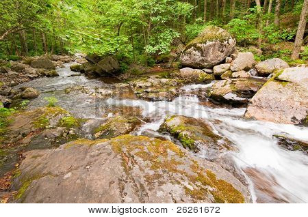 rocky forest stream Smolny in russian primorye reserve