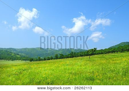 wideangle green meadow view with clouds from Hasan reserve