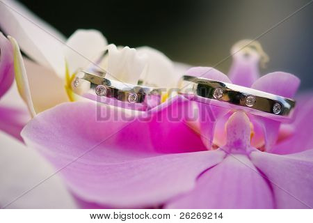 wedding rings with pink orchid