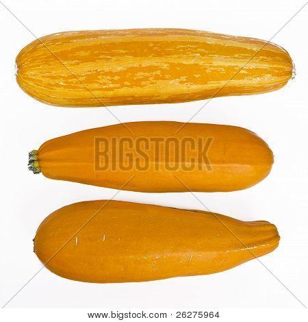 yellow marrows