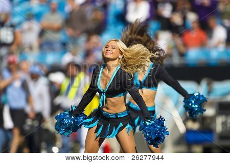 CHARLOTTE, NC - NOV 21:  The TopCats perform as the Carolina Panthers play the Baltimore Ravens on Nov 21, 2010 at Bank of America Stadium in Charlotte, NC.