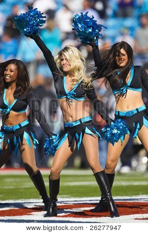 CHARLOTTE, NC - NOV 21, 2010:  The TopCats perform as the Carolina Panthers play the Baltimore Ravens on Nov 21, 2010 at Bank of America Stadium in Charlotte, NC.