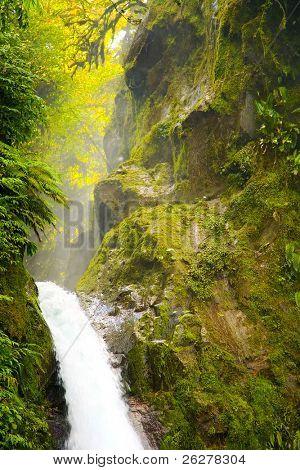As cachoeiras de La Paz, Costa Rica