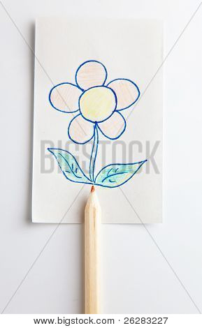 flowers on the pencil