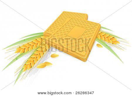 sabrosas galletas con espigas de trigo y la hierba