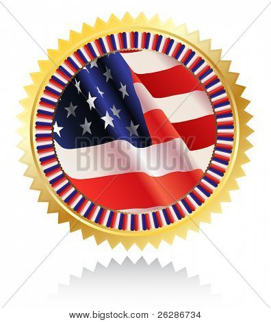 Americal flag