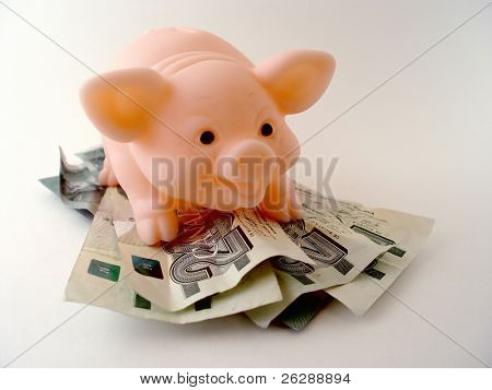 Piggy bank on pile of twenty dollar bills
