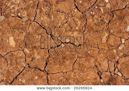 Dry brown soil texture