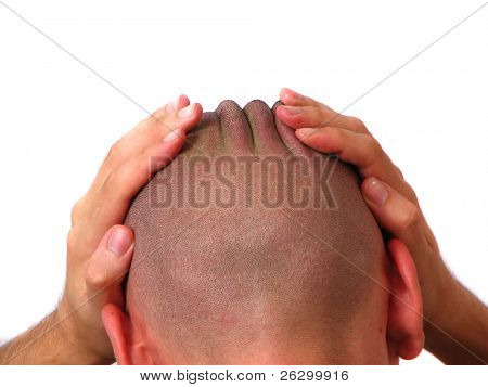 bold head