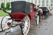image of hackney  - Wiener Carriages - JPG