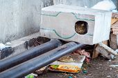 Stray Animals In Winter, Homeless Cat Sitting On A Heating Main, Homeless Frozen Cat Warms On Pipes, poster