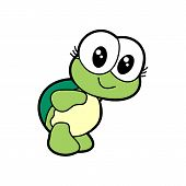 Cute Cartoon Turtle Vector Illustration.cartoon Animal Turtle Isolated On Background.sea Turtle, Bab poster