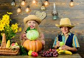Autumn Harvest Festival. Children Play Vegetables Pumpkin Cabbage. Kids Girl Boy Wear Hat Celebrate  poster