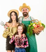 Family Farmers Gardeners Basket Harvest Isolated White Background. Parents And Daughter Farmers Cele poster