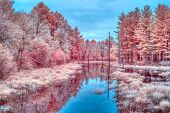 Vibrant Seasonal Infrared Autumn Colors And Water Near Cumberland, Wisconsin, Usa. poster