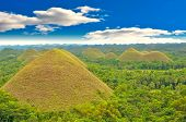 picture of chocolate hills  - View of the Chocolate hills - JPG