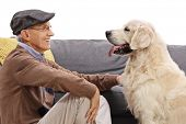 Senior with a labrador retriever dog isolated on white background poster