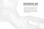 Topographic Map Contour Background. Line Map With Elevation. Geographic World Topography Map Grid Ab poster