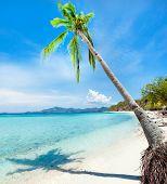 Постер, плакат: Тропический песчаный пляж Малькапуйя в солнечный летний день