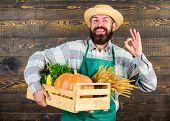 Man Cheerful Bearded Farmer Wear Apron Presenting Vegetables Pumpkin Wooden Background. Fresh Organi poster