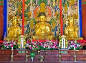 stock photo of seoraksan  - buddhist altar of the Buddhist Sinheungsa Temple in Seoraksan National Park - JPG