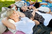 friendship, leisure and summer concept - group of happy friends chilling on picnic blanket at park poster