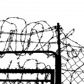 picture of stockade  - fence from barbed wires - JPG