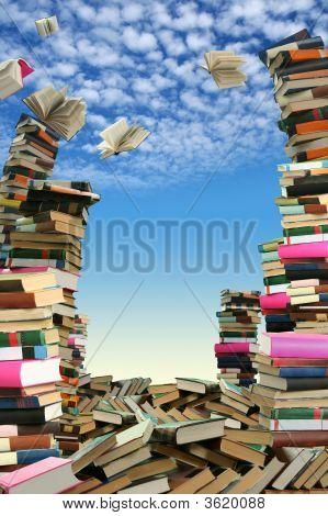 """Libro """"sellout"""""""