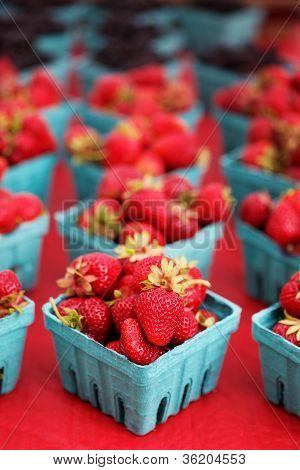 Narrow Focus Strawberries