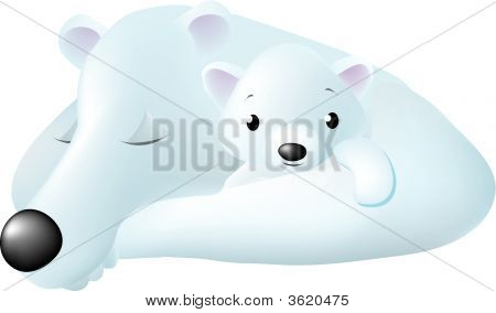 Mom & Baby Polar Bears