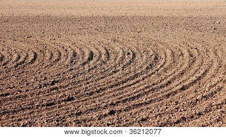 Furrows On Field