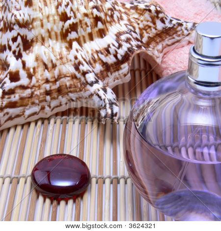 Sea Shell And Perfume Bottle