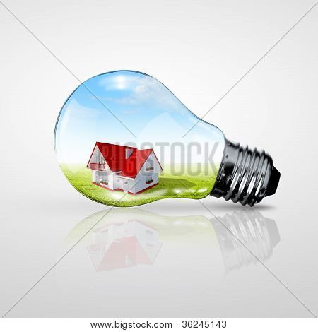 Electric light bulb and house inside it