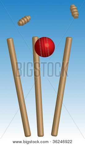 Cricket Ball Hitting Wicket