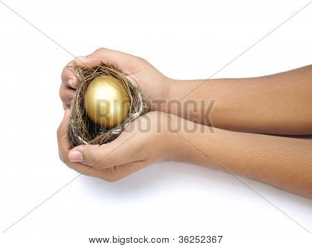 golden egg on the hand  with nest