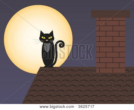 Cat On The Roof