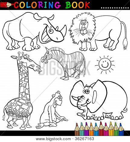 Animals For Coloring Book Or Page