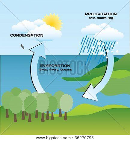 The hydrologic circle