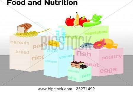Food and Nutrition in infographic chart