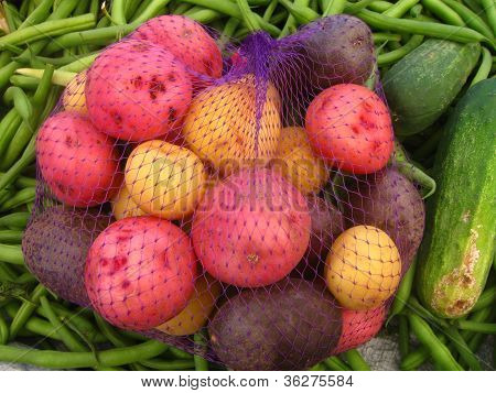 multicolor potatoes in a net bag