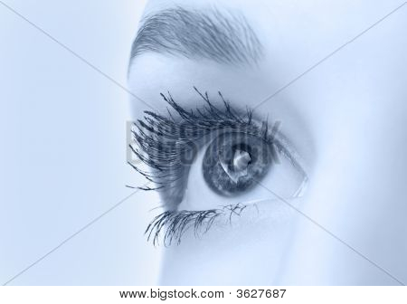 Beautiful Eye Closeup