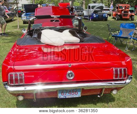 Back View Of A 1960's Red Ford Mustang