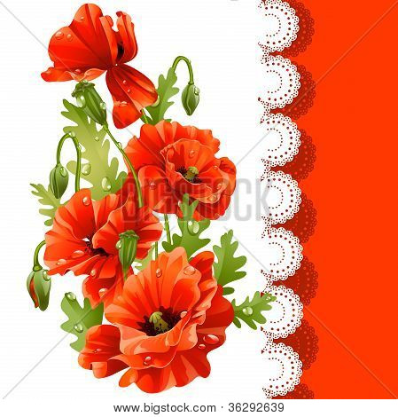 Beautiful postcard with red poppies