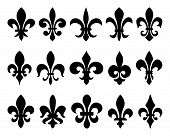stock photo of fleur de lis  - Fleurs - JPG