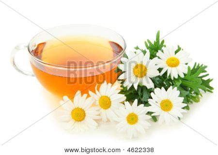 Herbal Camomile Tea